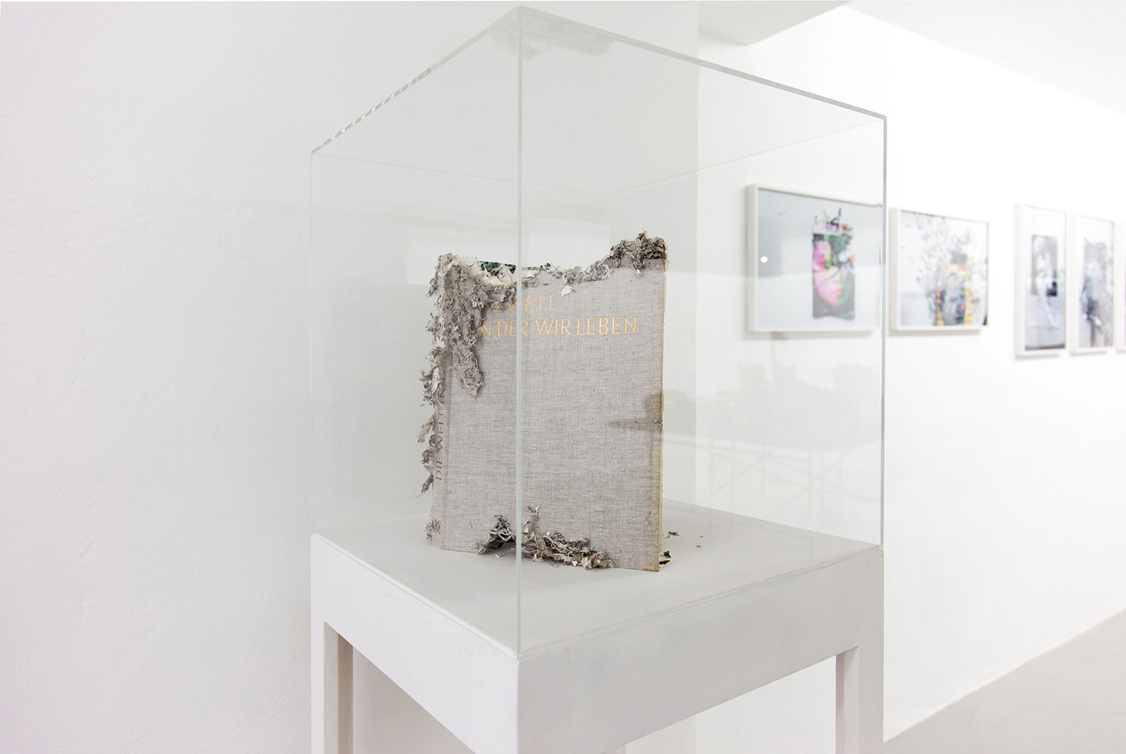 Installation view: THE WORLD WE LIVE IN, kjubh Kunstverein, Köln