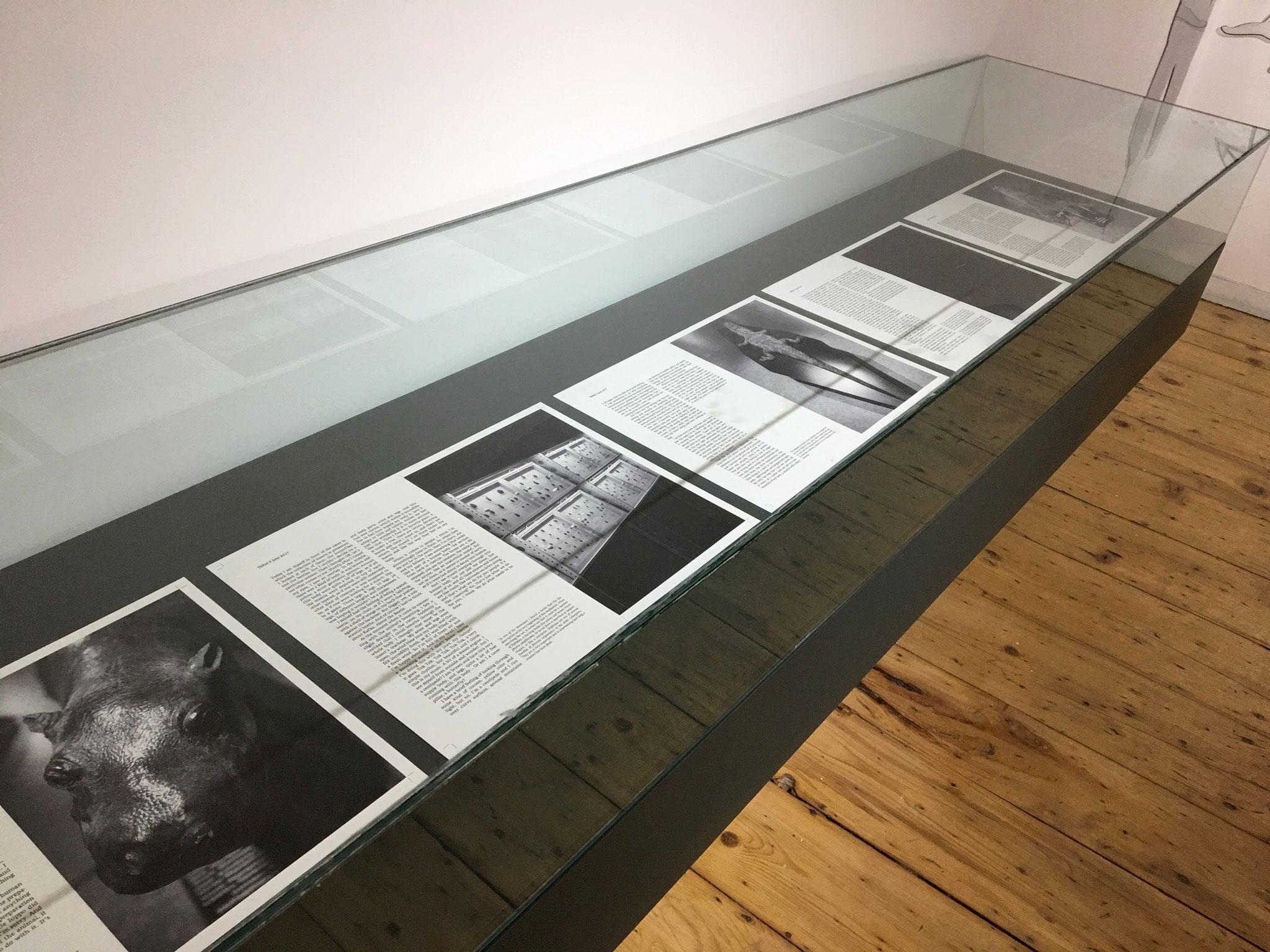 Installation view, TAVIDAN, CCA – Center for Contemporary Art, Tbilisisi